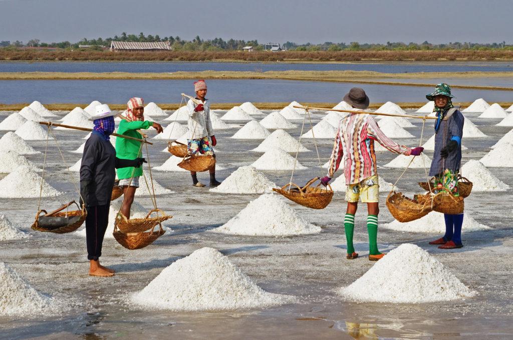 proses pembuatan garam tambak